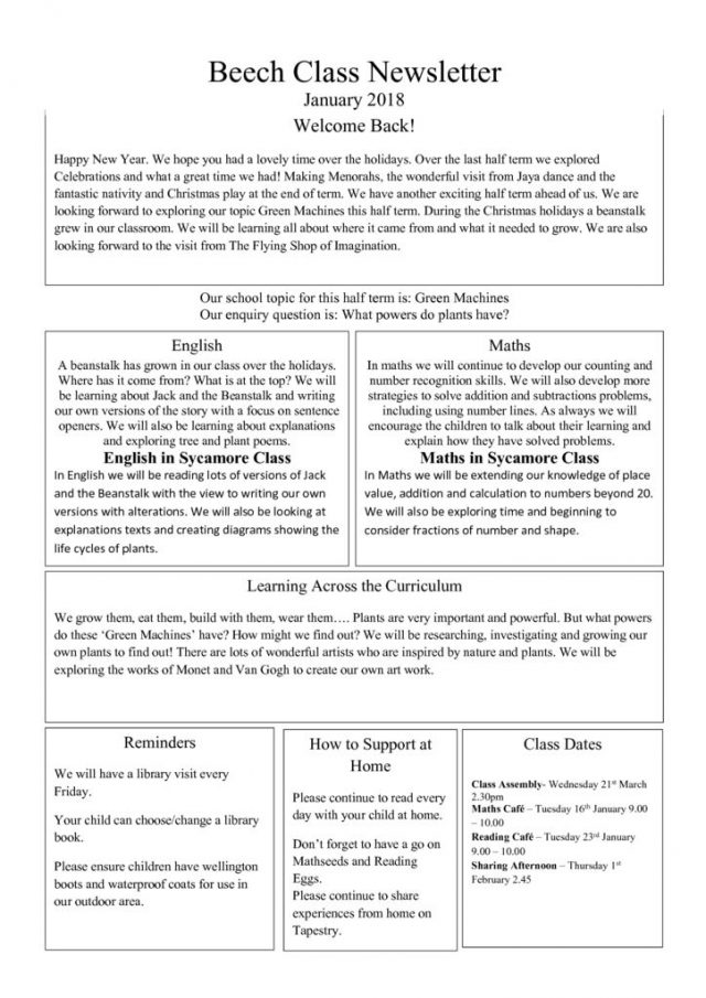thumbnail of Beech Class Newsletter January 2018